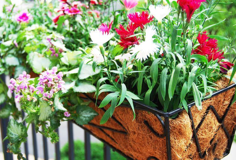 GardenRailing